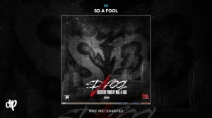 SD A Fool BY SD X Will A Fool